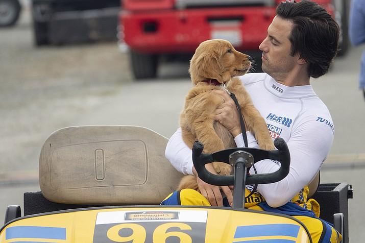 """Milo Ventimiglia in a scene from """"The Art of Racing in the Rain."""" (Doane Gregory/Twentieth Century Fox via AP)"""