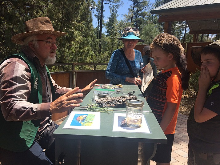 David DeVille, key volunteer at the Highlands Center for Natural History, teaches Jacob and Spencer Herschel about beetles with grandmother Susan Ide watching at The James Family Discovery Gardens on Saturday, June 3. (Jason Wheeler/Courier)