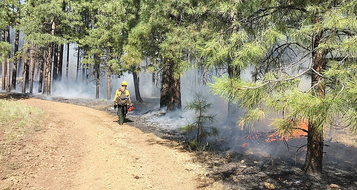 "The Sedona Fire District has suspended all issued burn permits for the burning of yard debris ""due to the continued unseasonably hot weather and lack of monsoonal moisture."" File photo"