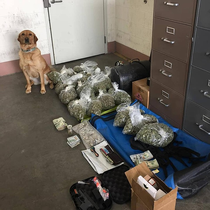 Prescott Police Department K9 Blue poses next to a large amount of marijuana and other contraband seized during a drug bust in early April 2019. As of July 1 2019, Blue and his handler, officer Shawn Bray, were assigned to assist Partners Against Narcotics Trafficking with drug interdiction and investigations. (Prescott Police Department/Courtesy, file)