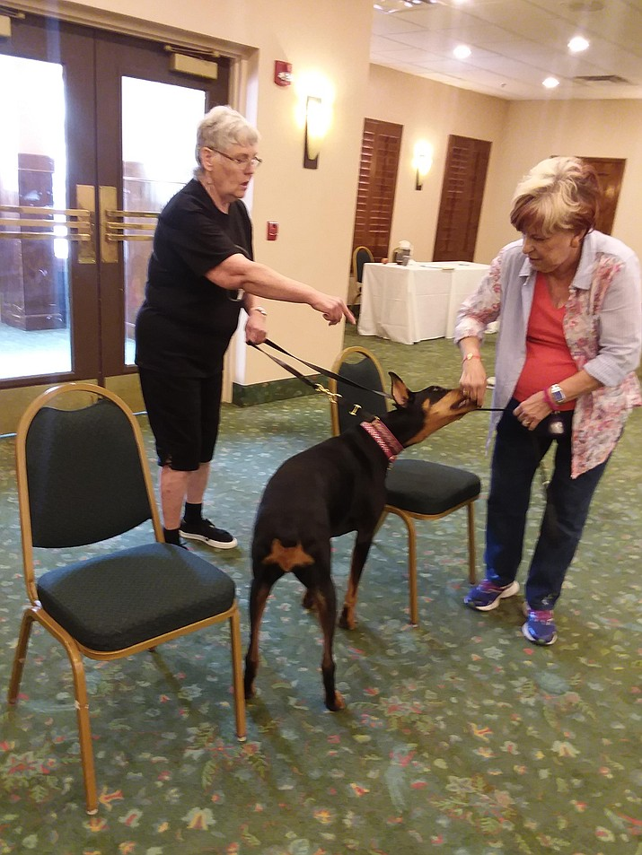 Debbi Decker demonstrates how to teach a new move to Janet Bain and her Doberman, CeeCee, who is most eager to learn if the treats are ever flowing. (Christy Powers/Courtesy)