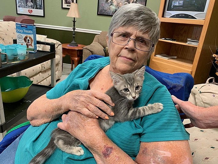 Desert Highlands Care Center celebrated National Dog Day Monday, Aug. 26 with help from the Mohave County Animal Shelter and a few cats, too. (Photo courtesy Mohave County Animal Shelter)