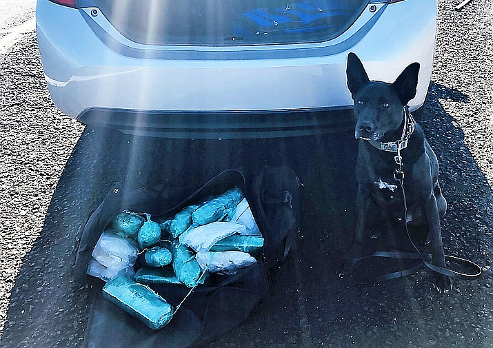 K9 Vader standing helped locate a load of drugs during a traffic stop on Interstate 40 in Ash Fork Aug. 18. (Yavapai County Sheriff's Office/Courtesy)