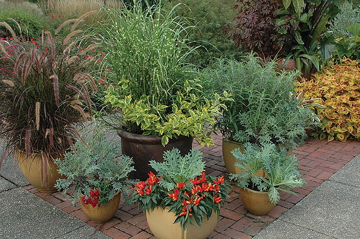 Mix ornamental and edible plantings in fall container gardens for some added color and nutrition. (Melinda Myers/Courtesy)