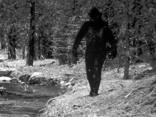 This is a 1977 still photo made from a 16mm film made by Ivan Marx reportedly showing the legendary Big Foot cavorting in the hills of northern California. (AP Photo/File)