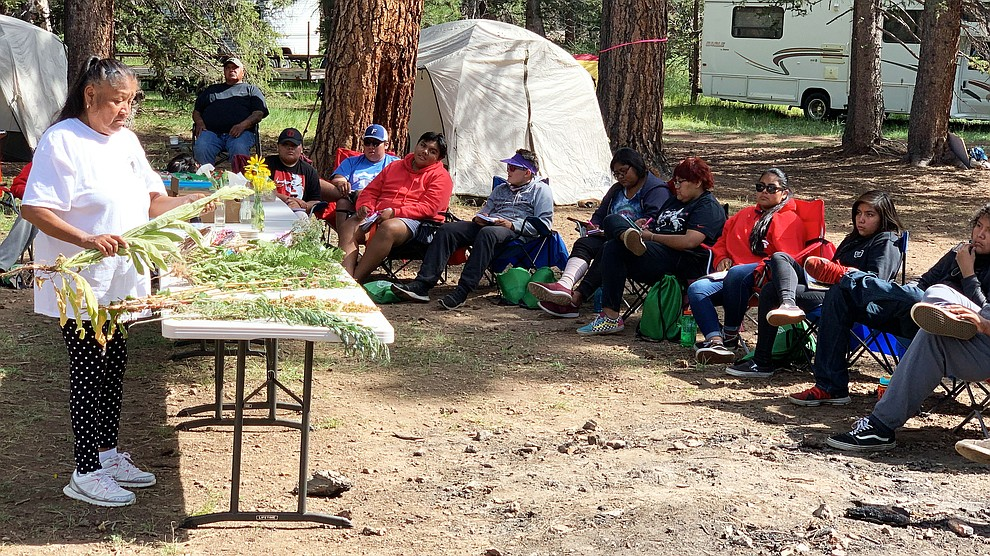Cecila Long, of the San Juan Southern Paiute Tribe, teaches campers about traditional medicinal uses for various every-day plants found in the forest. 190803-BLM-GSENM-Hercher-IMG_7165. Photo by BLM Public Affairs Specialist David Hercher.