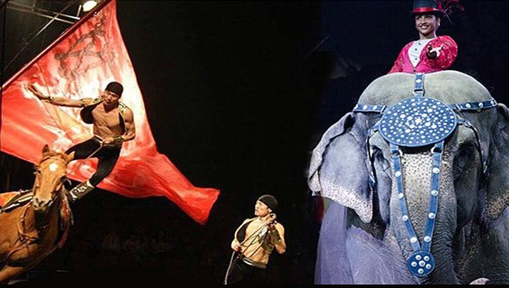 (Jordan World Circus)