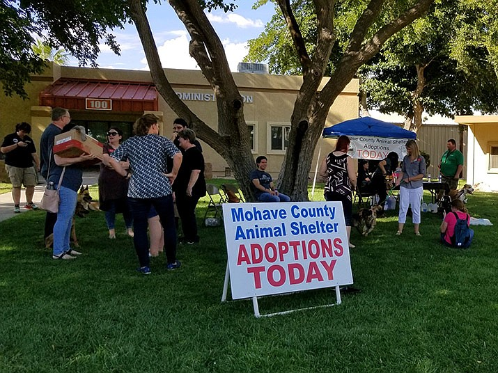 "Numerous dogs found their forever homes at Mohave Community College's ""Pawsitive Therapy"" event held Friday, Sept. 6 at the Neal Campus in Kingman. (Photo courtesy of Mohave County Animal Shelter)"