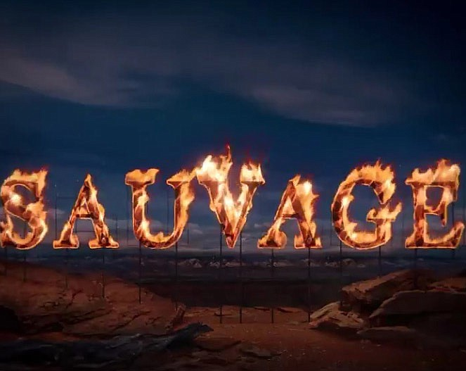 Americans for Indian Opportunity collaborated with Dior to advertise Sauvage fragrance campaign released on Sept. 2. (Photo/Screenshot of video from Dior's Twitter page)