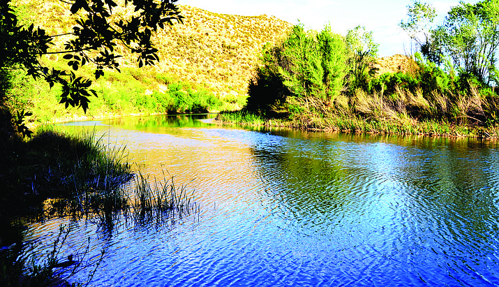 Verde River Day promotes environmentalism by showcasing informative exhibits about the river's unique riparian habitat. VVN file photo.