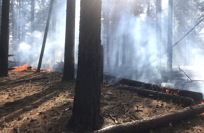 Wednesday, firefighters conducted firing operations on the fire management boundary of the Whiskey Fire along Forest Road 231 to protect areas and ensure the active wildfire stays in its containment area. Fire activity and smoke impacts will increase in the immediate area through Thursday. Coconino National Forest photo