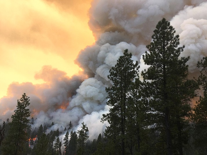 The Whiskey Fire, caused by lightning, is being managed on Coconino National Forest. (USFS/photo)