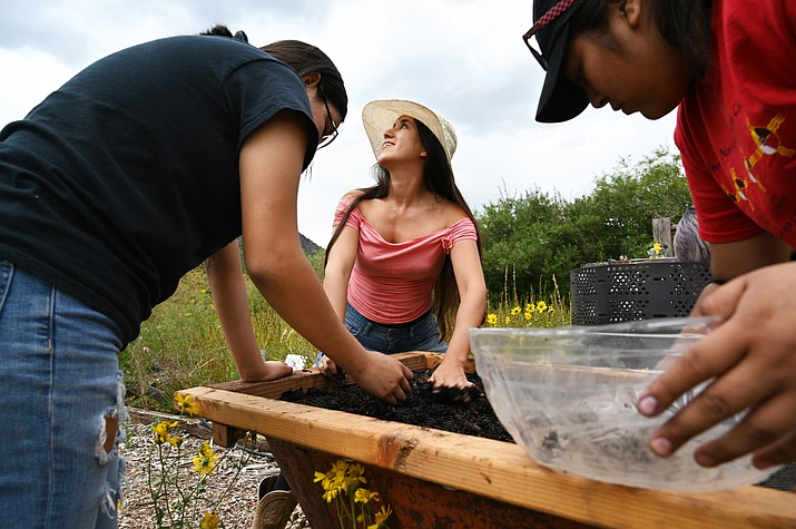 Kinlani students learn how to grow and market hundreds of pounds of produce through a program called Cultivate. The program runs for six weeks in the fall and six weeks in the spring, giving students a chance to experience both ends of the growing season. (Photos courtesy of MNA)