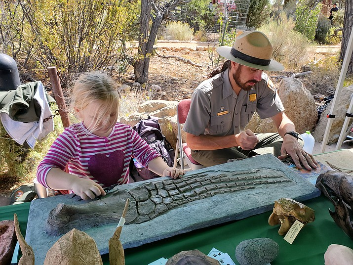 Kaia Hix contemplates a plesiosaur fossil while completing her junior ranger program workbook Sept. 28. (Erin Ford/WGCN)