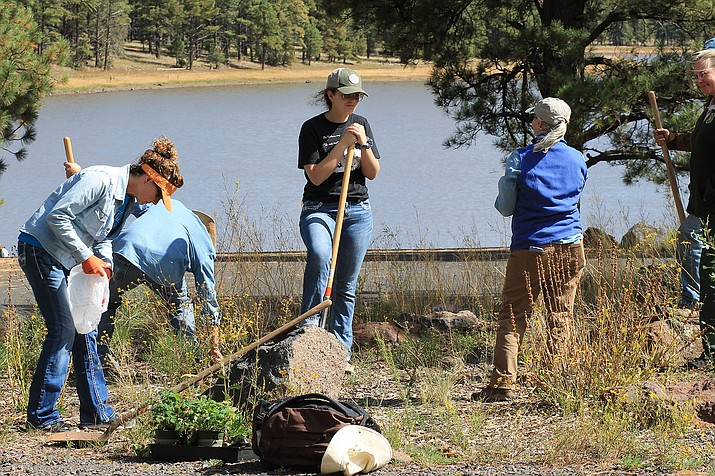 Volunteers gathered at Kaibab Lake for National Public Lands Day Sept. 28 to show appreciation for Forest Service employees and participate in service projects. Volunteers picked up trash surrounding the lake, pulled weeds and invasive plants and helped clear an area for a pollinator garden. (Wendy Howell/WGCN)