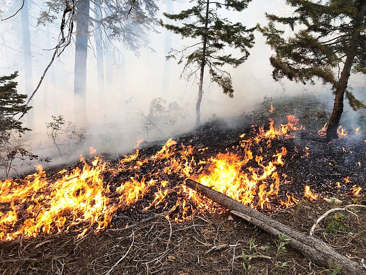 Fire moves across the ground through dead pine needles during an earlier fire in 2019. (Photo/InciWeb)