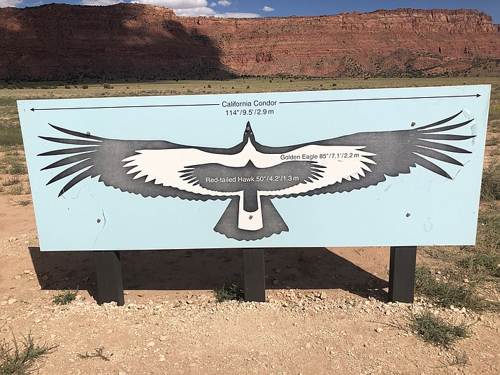 The Vermilion Cliffs are in the background behind this sign illustrating the impressive wingspan of California condors. (Courtesy)