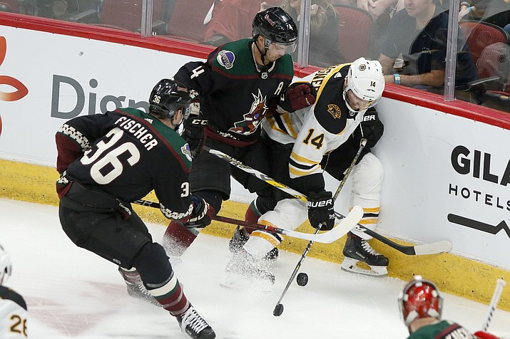 Boston Bruins' Chris Wagner (14) gets pinned up against the boards by the Arizona Coyotes' Niklas Hjalmarsson (4) and Christian Fischer (36) during the second period of a game Saturday, Oct. 5, 2019, in Glendale, Ariz. The Coyotes lost ot the Bruins 1-0. (Darryl Webb/AP)