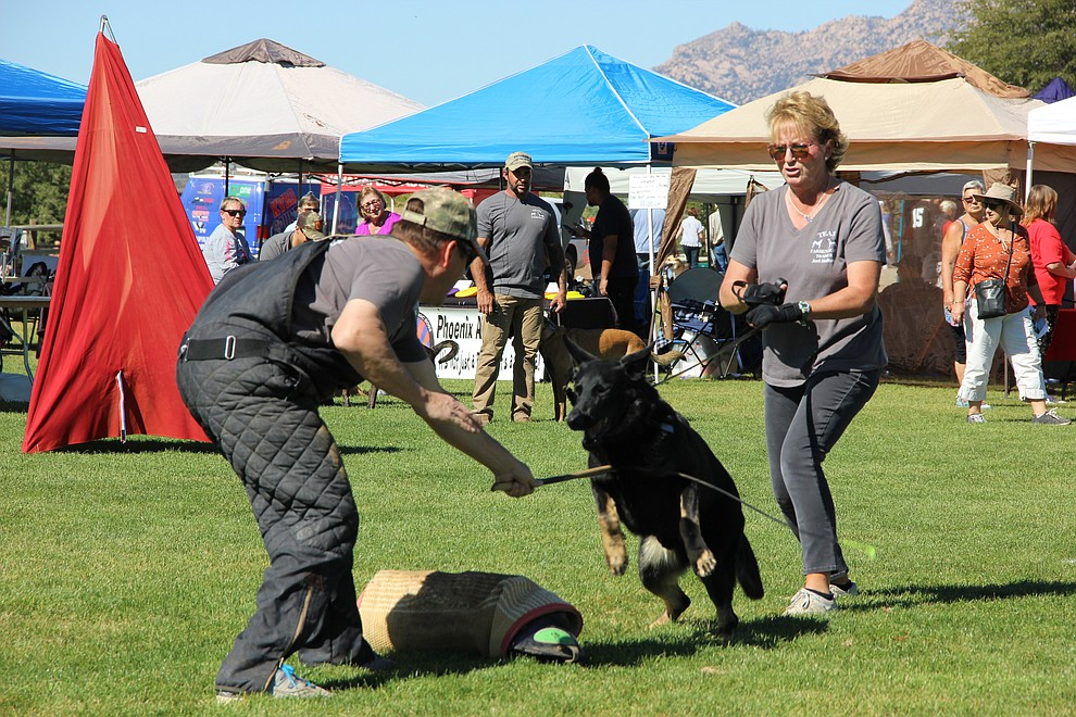 Dog trainers with Fabenholt Dog Training put on a K-9 demonstration at Watson Lake Park during Dogtoberfest Sunday, Oct. 6, 2019. The event included vendors, K-9 demonstrations, a costume contest, dog adoptions and much more. (Max Efrein/Courier)