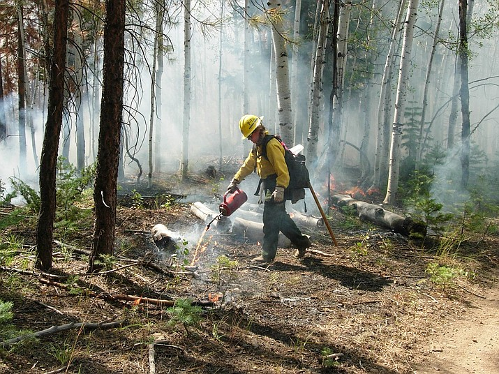 Fire crews have been completing burnout operations over the last week on the perimeters of the Ikes Fire. (Photo/Kaibab National Forest)