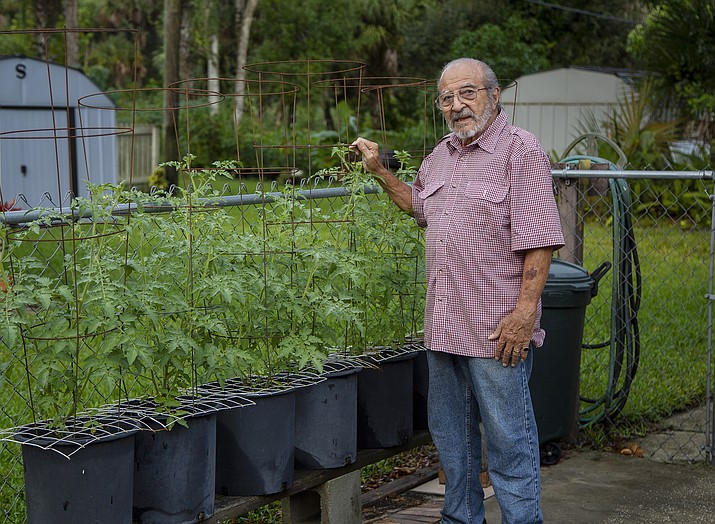 In this Oct. 9, 2019 photo, Joe Schiavone, 81, is seen in his yard in West Melbourne, Fla. Schiavone will get a modest cost-of-living increase from Social Security for 2020,a political year in which many Democrats are calling for a boost in basic benefits and a more generous formula to compute annual inflation adjustments. (Mike Brown/AP)
