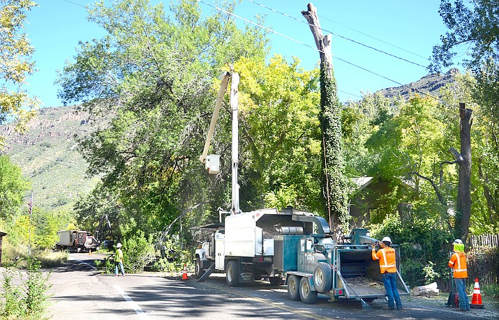 ADOT crews cut trees across from Indian Gardens Café in Oak Creek Canyon on Monday. VVN/Vyto Starinskas