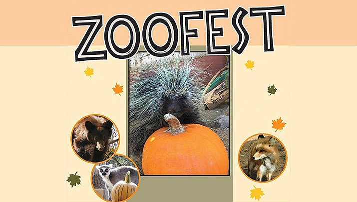 Come celebrate fall at Heritage Park Zoological Sanctuary's Zoofest, 1403 Heritage Park Road in Prescott from 9 a.m. to 5 p.m. on Saturday and Sunday, Oct. 26-27. (Heritage Park Zoological Sanctuary)