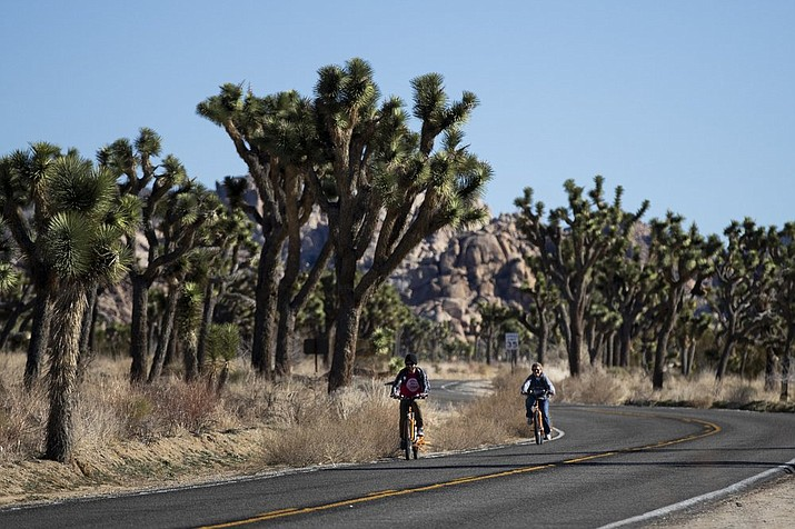 Two visitors ride their bikes along the road at Joshua Tree National Park in Southern California's Mojave Desert. (Jae C. Hong/Associated Press)