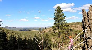 Helicopter logging underway on Bill Williams photo