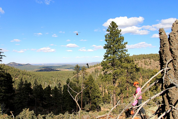 Aerial logging is being conducted through December to help reduce the risk of fire and flooding hazards on the northeast slope of Bill Williams Mountain. (Wendy Howell/WGCN)