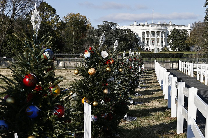 Students from 56 schools representing each U.S. state and territory created ornaments for trees surrounding a tree planted on the White House lawn. (Photo/NPS)