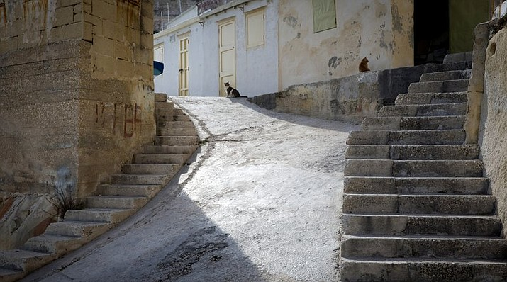 In this Thursday, Feb. 2, 2017 file photo, two cats sit at the top of the stairway in the middle of a small fisherman's landing in Valletta, Malta. The EU on Thursday, Nov. 28, 2019, said it guarantees the right of domestic cats to roam free, even if they can be a threat to birds. (AP Photo/Virginia Mayo)