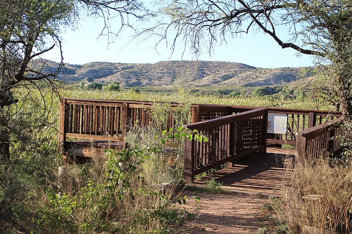 Tavasci Marsh is located in Cottonwood, Arizona. It was used by the Yavapai Apache and Hopi tribes for harvesting. (Stan Bindell/NHO)