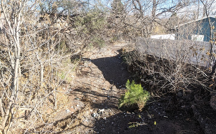 The grant is for various aspects of a project that would create a Y-shaped channel to shore up Del Monte Wash, through the short stretch from its Main Street bridge to the Verde River. VVN/Dan Engler