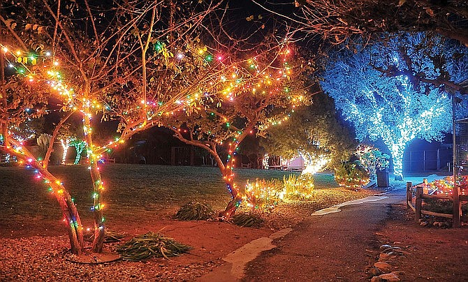 """""""Wildlights and Animal Sights"""" holiday light display will be open to the public every Friday and Saturday evening from 6 to 9 p.m. through Dec. 28 at Heritage Park Zoological Sanctuary, 1403 Heritage Park Rd. in Prescott. (Courtesy, file)"""