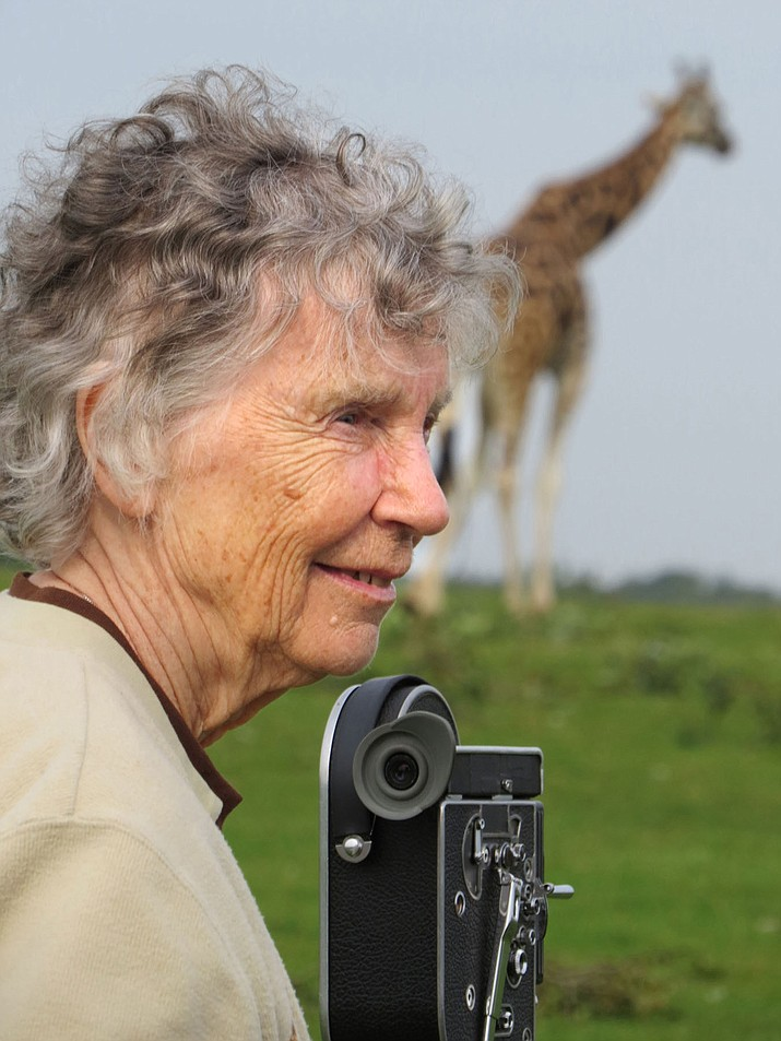 For three decades, Anne Innis Dagg was absent from the giraffe world until 2010 when she was sought out by giraffologists and not just brought back to into the fold, but finally celebrated for her work.
