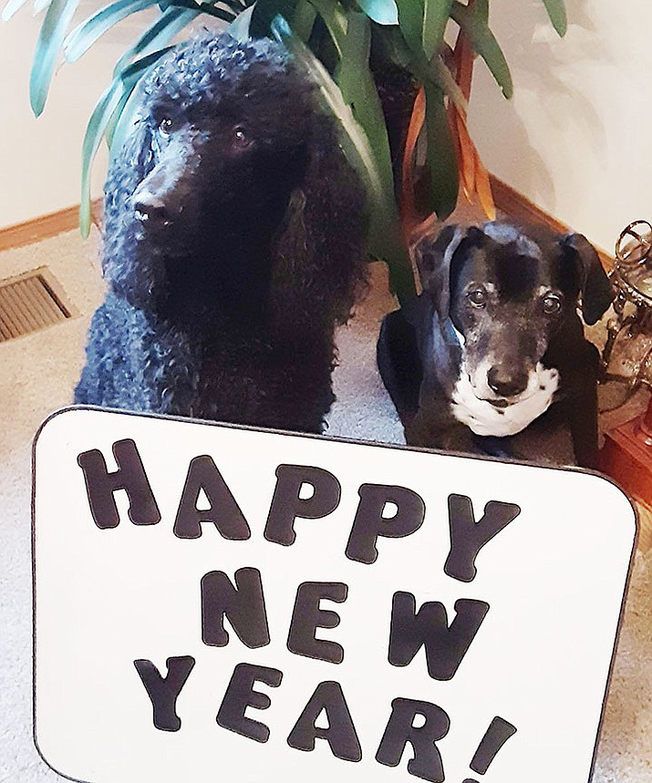 A very Happy New Year from Christy and the Blackpak. (Christy Powers/Courtesy)