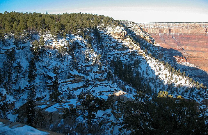 Snow-covered cliffs drop into a large canyon below a forested plateau at Grand Canyon National Park.