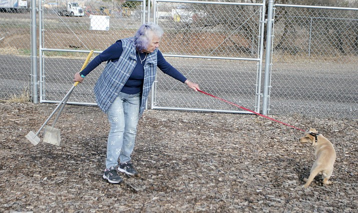 Pat George volunteers with the Camp Verde animal shelter on Industrial Drive. Wednesday, town council will consider decreasing the amount of days a stray dog is kept at the shelter before it goes up for adoption. VVN/Bill Helm