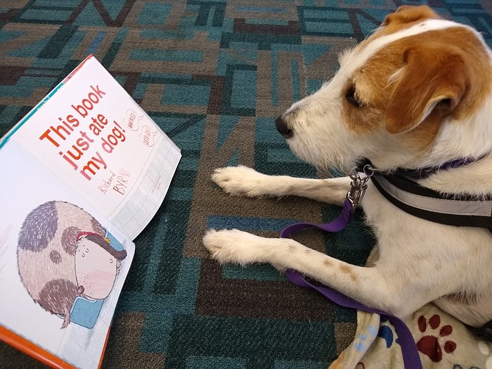 Come meet Cruiser, a three-legged, sweet dog from Pet Partners who loves kids and reading. He invites you to come read to him for 10 minutes after school at the Dewey-Humboldt Town Library, Lower Level, 2735 Corral St. from 3 to 4 p.m. on Thursday, Jan. 9. (Dewey-Humboldt Town Library)