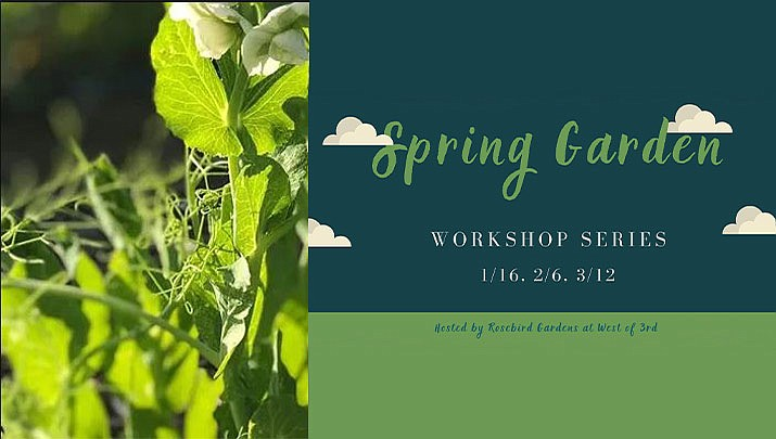 "Rosebird Gardens presents the first of their Spring Workshop Series, ""Garden Planning and Succession Planting"" at Rosebird Gardens, 224 E. Beale St. in Kingman from 6:30 to 7:30 p.m. on Thursday, Jan. 16. (Rosebird Gardens)"