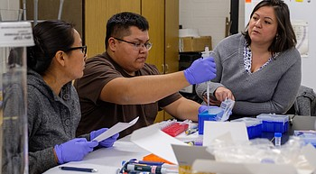 Diné College, University of Arizona in full swing with $1.3M neuroscience partnership photo