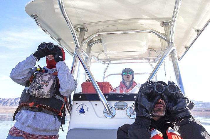 On Jan. 15, Carrie Norman, left, and Jason Lawor, right, watch for eagles and birds as Alex Swicegood drives the boat during the annual eagle survey conducted by the National Park Service at Lake Mead. (Ellen Schmidt/Las Vegas Review-Journal via AP)