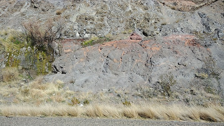 Water can be found in the desert if you know your geologic formations, as this spring off Highway 93 near Coyote Pass shows. (Photo by Luis Vega/For the Miner)
