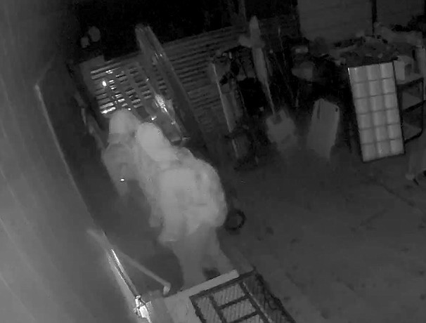 Two juveniles are seen on surveillance video burglarizing a Paulden home. (photo/YCSO)