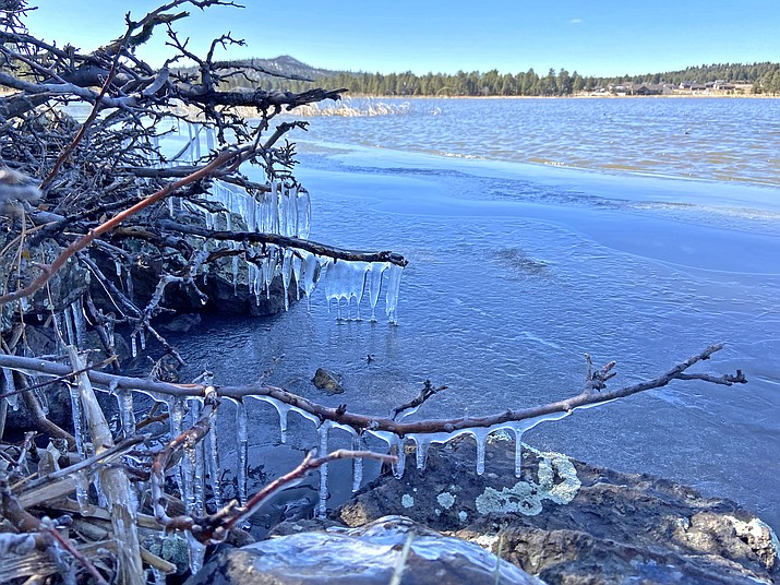 Icicles form on brush beside Cataract Lake Feb. 4. Cold temperatures and high winds settled over the area following a brief cold front.  (Wendy Howell/WGCN)