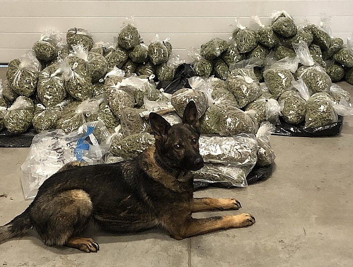 The Yavapai County Sheriff's Office seized 84 pounds of marijuana during a K9 traffic stop on Interstate 40 in the Ash Fork area on Wednesday, Feb. 12, 2020. (YCSO/Courtesy)