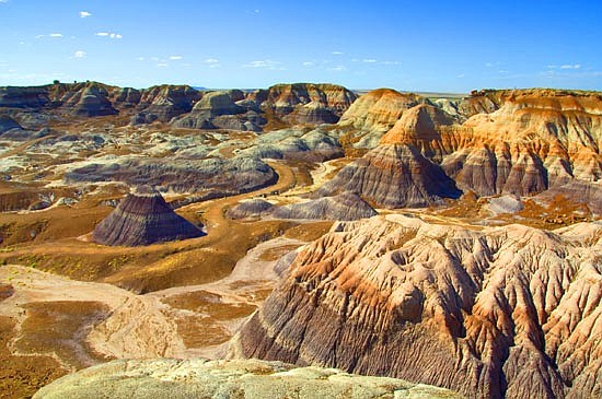 Land near the Petrified Forest National Park may be leased out for oil and gas exploration. (Courier, file)