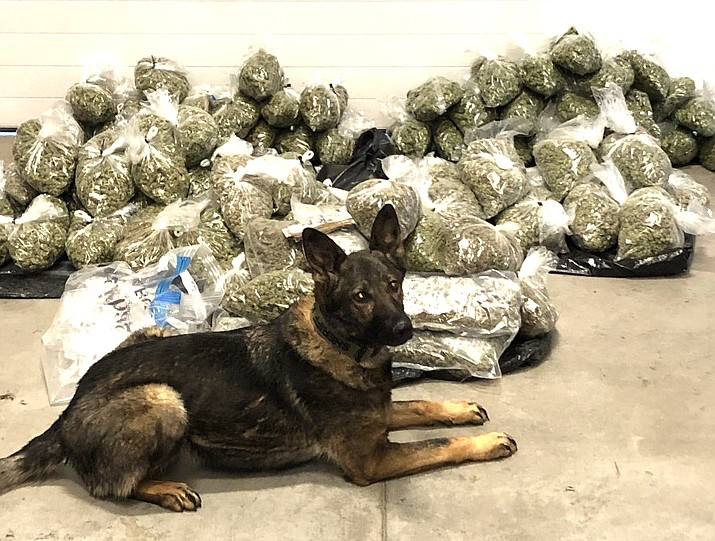 A YCSO K9 team seized a total of 136 pounds of marijuana and two seminautomatic handguns in a recent traffic stop on I-40 near Ash Fork. (YCSO/photo)