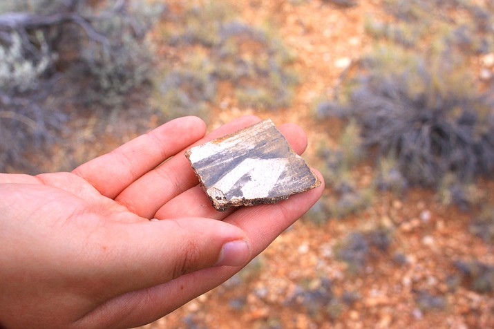 A volunteer reveals a potshard found during a Passport in Time event with Kaibab National Forest. (Photo/Kaibab National Forest)